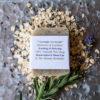 Natural Soap - Lavender Oat Scrub
