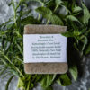 Natural Soap - Rosemary & Mountain Mint